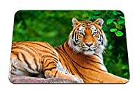 26cmx21cm マウスパッド (虎大きな猫肉食動物嘘の石) パターンカスタムの マウスパッド