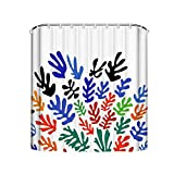 Noick Matisse Floral Pattern Boutique Shower Curtain Hooks Polyester Home Decor 72x80Inch