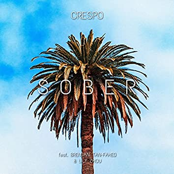 Sober (feat. Brendan Tan-Fahed & Lily Zhou)
