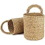 YHNJI Paquete de 2 cestas para colgar en la pared de 15,4 x 17,4 cm, pequeñas...