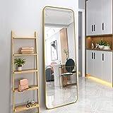 65×22' Full Length Mirror, Rounded Corner Floor Mirror, Standing Mirror, Full Body Mirror, Large Mirror, Floor Length Mirror, Wall Mirror, Al-Alloy Thickened Frame -Gold