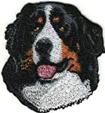 Iron On Embroidered Head Portrait Bernese Mountain Dog Breed Applique Patch Top Quality, 1 7/8' x 2 1/8'