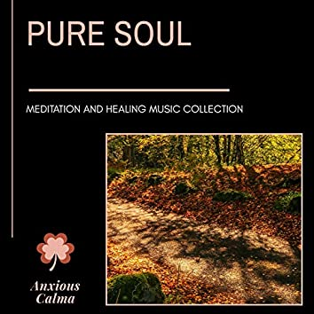 Pure Soul - Meditation And Healing Music Collection