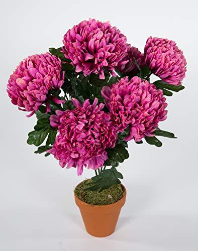 Seidenblumen Roß Chrysantheme 48cm Fuchsia-pink im Topf LM Kunstpflanzen Kunstblumen künstlichen Pflanzen Blumen