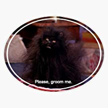 Salem Saberhagen Sticker Decal Vinyl Bumper Sticker Decal Waterproof 5""