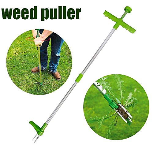 Vensf Standing Weeder and Weed Puller Tool, Stand up Manual Weeder Hand Tool with 3 Claws Portable Durable Weed Puller Root Remover