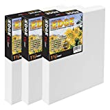 The Edge All Media Cotton Deluxe Pre-Stretched Canvas for Painting - Paintable Edges, 14 Ounce Priming for Richness and Purity of Paint Colors - Box of 3 - [1.5' Deep | 12X12]