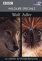 BBC Wildlife Specials 01 - Wolf / Adler