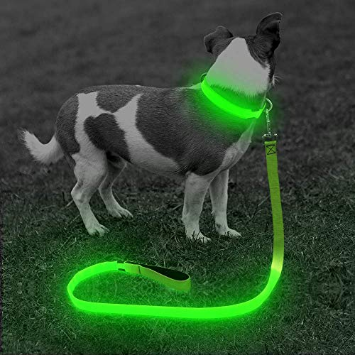 BSEEN LED Lighted Dog Leash - USB Rechargeable Nylon Puppy Lead, Safety Dog Lights for Night Walking (47 Inch, Neon Green)