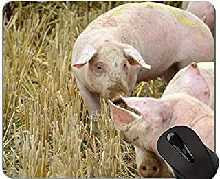 Lovely Pig Anti Slip Comfort Gaming Mouse Pad,Breeding Funny Cute Piggy Gaming Mouse Pad