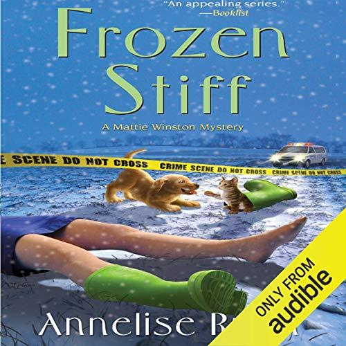 Couverture de Frozen Stiff