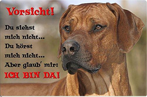 +++ RHODESIAN RIDGEBACK - Metall WARNSCHILD Schild Hundeschild Sign - RRB 38 T2 in S