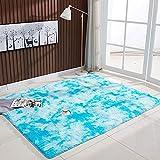 ZHOUZEKAI Moqueta Rectangular Alfombra Antideslizante para el hogar, Adecuado para la decoración de Salas de Estar y dormitorios,alfombras Decorativas (Azul Claro, 100_x_160_cm)