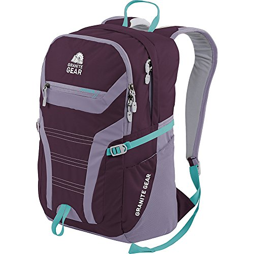 Granite Gear Champ Laptop Backpack (Gooseberry/lilac/Stratos)