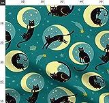 Katzen, Mond, Sterne, Himmelskörper, Katzenhaft, Magisch