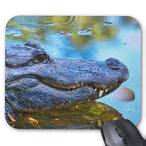 Mousepad Anti-Rutsch-Gummi Gaming Mauspad Rechteck Mauspad für Computer Laptop Alligator mit Golfball Mauspad