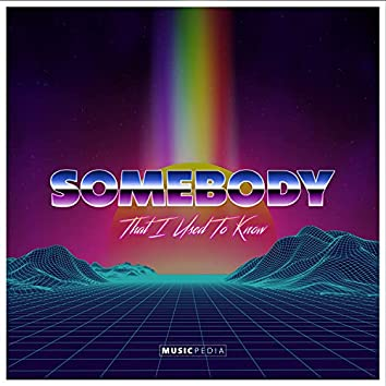 Somebody That I Used to Know (Remix)