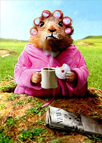 Morning Groundhog Funny Mother's Day Card