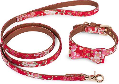 Puccybell hondenhalsband met boog en linnen, 1,2 m, in set, halsband met strik en linnen, voor kleine en middelgrote honden, maat HLS005, Taille L: 36-42cm, Rood