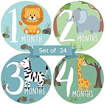 Baby Monthly Stickers   Zoo Animals Baby Milestone Stickers   Jungle Newborn Boy or Girl Stickers   Month Stickers for Baby Boy   Gender Neutral   Unisex Safari Newborn Monthly Milestones  Set of 24