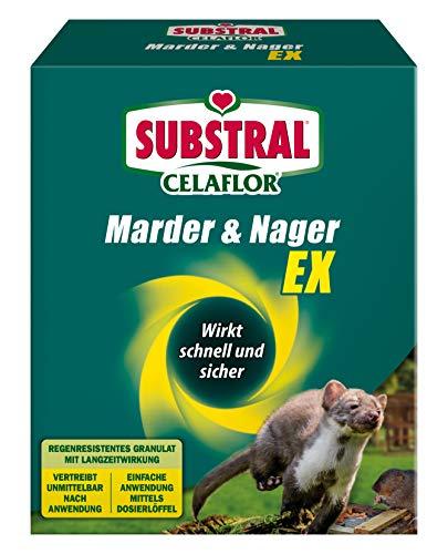 Substral Celaflor Marder & Nager Ex, Abwehr und Abschreckung, zum Vertreiben von Mardern und Nagetieren in Haus, Garage, Dachboden und Garten, 300g