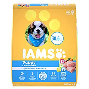 IAMS PROACTIVE HEALTH Smart Puppy Large Breed Dry Puppy Food with Real Chicken 30.6 lb Bag