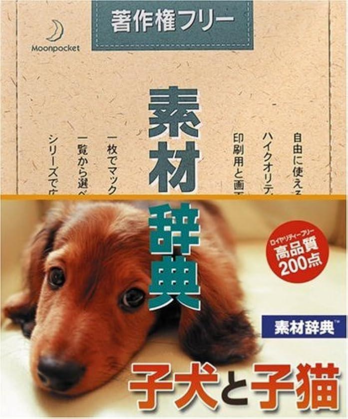 鷲領事館硬化する素材辞典 Vol.124 子犬と子猫編