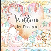 Willow: Record and Celebrate Your Baby's 1st Year With This Baby Milestone Journal