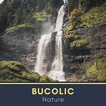 Bucolic Nature, Vol. 14