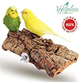 Vogelgaleria® Tolles Korksitzbrett groß für Vögel | Wellensittich Kork Sitzbrett 20x10 cm als perfektes Zubehör im Käfig | Kork Rinde ist EIN großartiges Spielzeug für Nymphensittich und Papagei