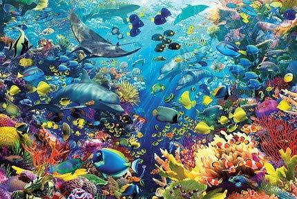 Rowe Piso De Puzzle Rompecabezas Concha De Coral Peces del Rompecabezas Y El Acuario De Niños For El Crecimiento De Aplicaciones De 1000 Pieza De Rompecabezas For Adultos