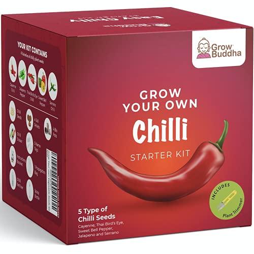 Grow Your Own Chili Samen Kit - Züchten Sie 5 verschiedene Arten von Chili Samen zu Hause - Anfängerfreundliche Chili Samen Starter Kit mit kompletter Anleitung - Einzigartiges Geschenkset Kit