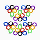 Pack of 36 Colorful Spring Spiral Wrist Coil Key Chain, Wristband Key Ring (Assorted Color)