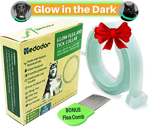 MEDODOR Flea and Tick Collar for Small and Large Dogs | 8-Month Tick and Flea Control for Dogs 100% Natural Ingredients | Glow in The Dark Waterproof & Long Lasting (LightGreen)