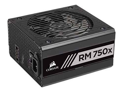 Corsair CP-9020179-EU RM750x - Fuente de alimentación (totalmente modular, 80 Plus Gold, 750 W, EU) negro