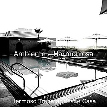 Ambiente - Harmoniosa