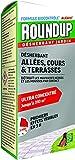 Roundup Liquide Desherbant Allées Cours & Terrasses Concentré, 700ml