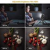 Immagine 1 vl66 luce led video light
