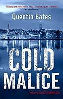 Cold Malice (Gunnhildur Mystery)