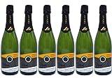 Domaine Vincent Goesel – Crémant d'Alsace – 2016 – Lot de 6 bouteilles de 75cl