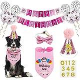 Dog Birthday Bandana Girl, VIPITH...