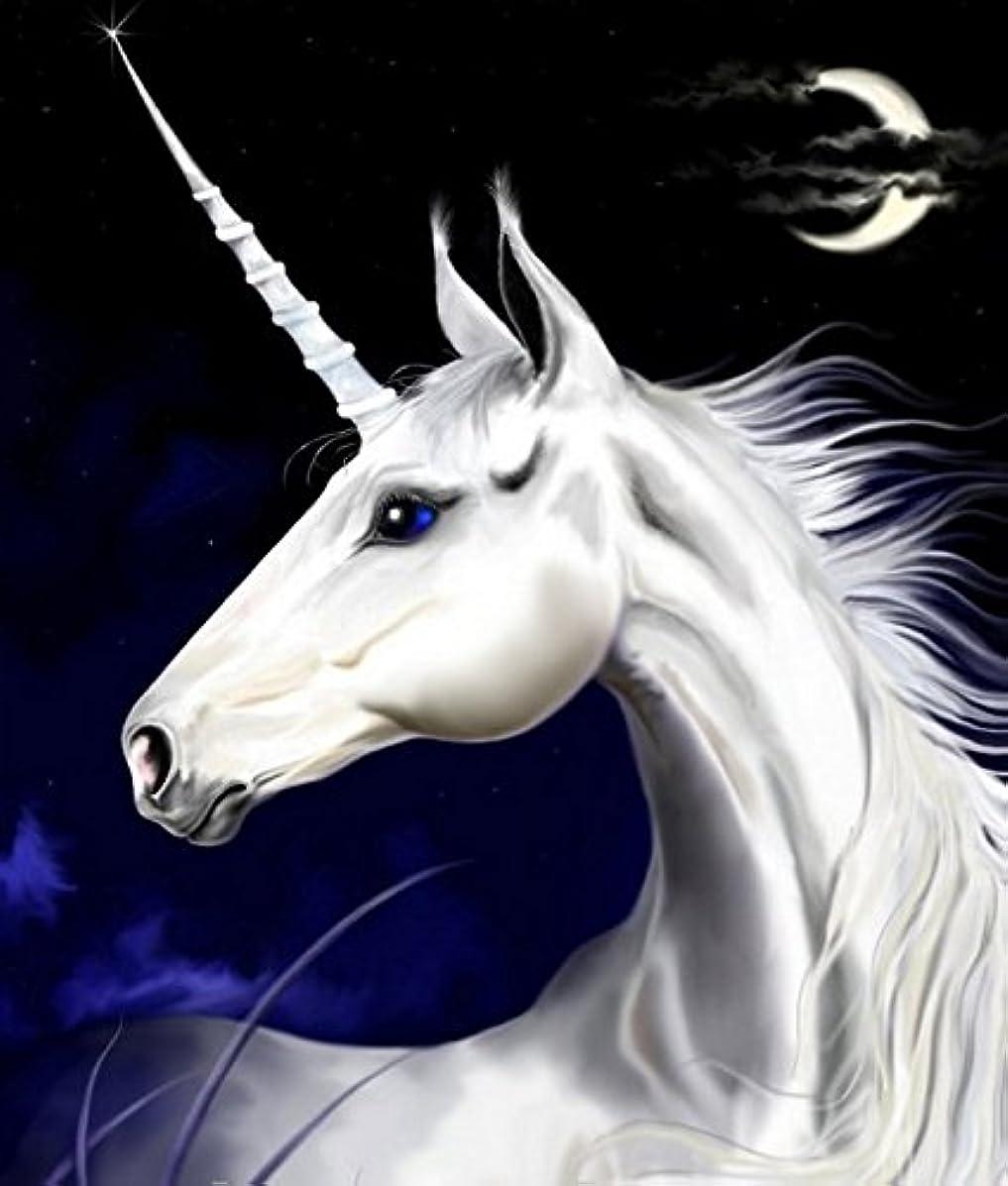 Crow's Soul 5D DIY diamond paintings diamond cross -embroidered diamond Horse unicorn white night moon