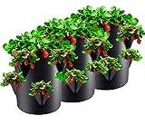 Cymax 3 Pièces Plantes Sac de Croissance,Sac pour Plantes de 7 gallons avec Rabat et Poignées,Pots en Tissu Non-tissé pour Fraise/Pomme de Terre/Tomate/Fleurégumes