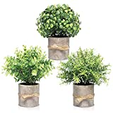 Plantas artificiales en macetas para decoración del hogar en interiores - Decoración de oficina para mujeres Escritorio, planta de escritorio - Decoración de plantas de imitación en interiores...