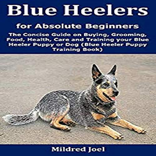 Blue Heelers for Absolute Beginners cover art