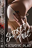 Slicked Pole: Extreme Play (Quickie) (English Edition)