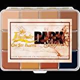 PPI Skin Illustrator On Set Dark Flesh Tone Makeup Palette