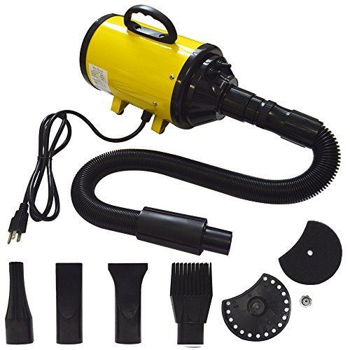 Belinde Pet Hair Grooming Dryer for Dogs & Cats with4 Nozzles (yellow)