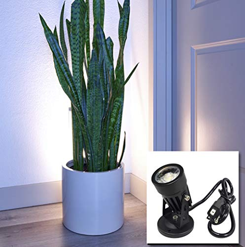 LED Indoor Spot Light for Plants & Accent Lighting - Uplight & Down Spotlight for Potted Plants Home...