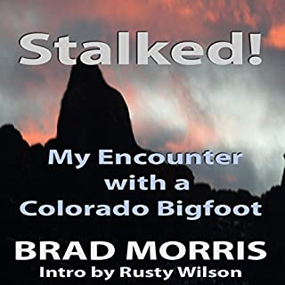 Stalked! cover art